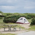 Typical campsite at Frisco Beach Campground.- Cape Hatteras National Seashore