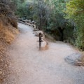 The High Peaks Trail from Bear Gulch is a common way to reach the Tunnel Trail in Pinnacles National Park.- Tunnel Trail