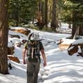 North rim trail, Yosemite Valley.- North Dome via Yosemite Falls