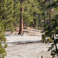 Prime camping locations exist at the base of North Dome with unrivaled views of Half Dome.- North Dome via Yosemite Falls