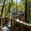 The viewing platform on Weston Lake.- Boardwalk Trail