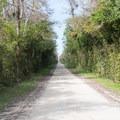 Loop Road.- Loop Road Scenic Drive
