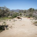 Typical campsite at Piñyon Flat Campground.- Piñyon Flat Campground