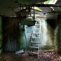 An abandoned structure along the trail to the waterfall.- Harold L. Lyon Arboretum