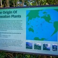 There are many informational signs around the trails.- Harold L. Lyon Arboretum