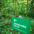 Follow the signs to the waterfall.- Harold L. Lyon Arboretum