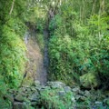 Depending on the rain, the waterfall can be just a trickle.- Harold L. Lyon Arboretum