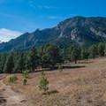 View of Bear Peak from the top of the loop.- Shanahan Forks Loop