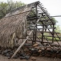 A model of a traditional structure atop the stone wall foundation.- Lapakahi State Historical Park