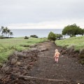 Lapakahi State Park is a family-friendly stop with trails that are easy to walk.- Lapakahi State Historical Park