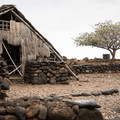 A model of a traditional structure in Lapakahi State Park.- Lapakahi State Historical Park