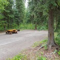 Typical campsite at Liard River Hot Springs.- Liard River Hot Springs Campground