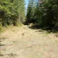 Grass road to right just before left hand trail at top of the gorge.- Icy Creek Spring in the Green River Gorge