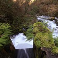 Old dam at upper Icy Creek Spring.- Icy Creek Spring in the Green River Gorge