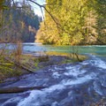 Confluence of Icy Creek Spring and the Green River.- Icy Creek Spring in the Green River Gorge