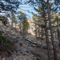 Nearing the dead-tree zone near the saddle.- South Boulder Peak via Shadow Canyon