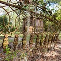 Old iron fence on the chapel grounds.- Chapel of Ease Ruins