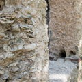 Tabby is made of seashells plastered together, and it holds up surprisingly well.- Chapel of Ease Ruins