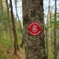 The trail is well marked.- Trombatore Trail