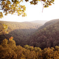 The setting sun turns the valley a golden yellow.- Whitaker Point Trail + Hawksbill Crag