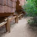 Petroglyph Canyon.- Zion's Petroglyph Canyon