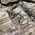 Textured lava rock.- Big Nasty Trail + Hidden Valley