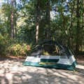 Tent camping in Myrtle Beach State Park.- Myrtle Beach State Park Campground