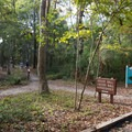 Marked trails and signs make it easy to navigate.- Myrtle Beach State Park Campground