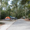 The campground has paved roads and gravel pull-ins.- Myrtle Beach State Park Campground