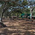 Shady picnic area near the beach.- Myrtle Beach State Park Campground