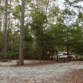 Hopefully you will have lots of sites to choose from.- Myrtle Beach State Park Campground