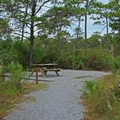 Typical campground site.- Topsail Hill Preserve State Park