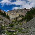 Midway up Pete Creek.- Mount Breitenbach