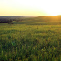 A view from Kings Creek Trail during the waning hours of a summer evening.- Konza Nature Preserve