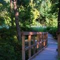 The trailhead bridge.- Konza Nature Preserve