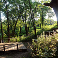 A small outdoor amphitheater at the location of the old farmstead.  - Konza Nature Preserve