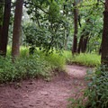 The trails are well kept but can be muddy at times.- Indian Cave State Park