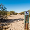 The trail is well marked.- Wild Horse Trail