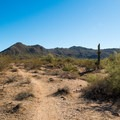 There are other trails nearby that look like only horses use them. Although fun to explore, these are not the actual Wild Horse Trail.- Wild Horse Trail