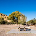 There are several picnic areas at Butcher Jones Recreation Area.- Saguaro Lake