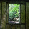 From within Kay's Cottage.- Cooper Gristmill to Kay's Cottage via Patriot's Path