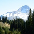 Gaining the alpine meadows at last.- Singing Pass