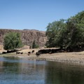 The John Day River is challenged by plenty of agricultural runoff from livestock and conventional farming chemicals contributing to its poor water quality. - John Day River: Service Creek to Clarno