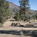 Typical site area at the Service Creek Campground.- Service Creek Campground
