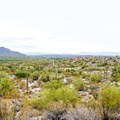 Open views into the Tonto National Forest.- Hawes Trail Network