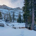 Trees provide good protection from sun in summer and snow in winter.- Emerald Lake Campground