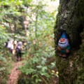 A forest gnome may greet you on your hike along Shining Creek Trail. - Shining Rock via Big East Fork
