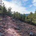 Near Sanitas Summit on Lions Lair.- Anemone + Mount Sanitas Loop Trail
