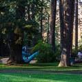 Picnic area at the entrance of the park.- Kamiak Butte County Park
