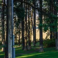 The rolling hills of the Palouse are visible from the park.- Kamiak Butte County Park
